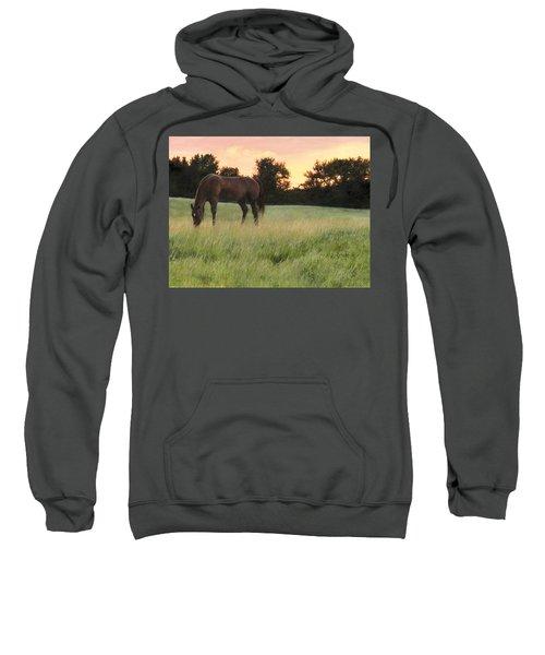 Sorrel Beauty Sweatshirt