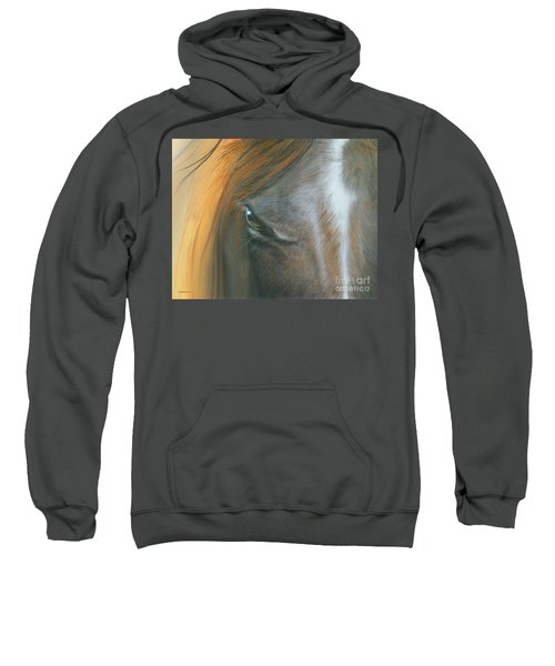 Soul Within Sweatshirt