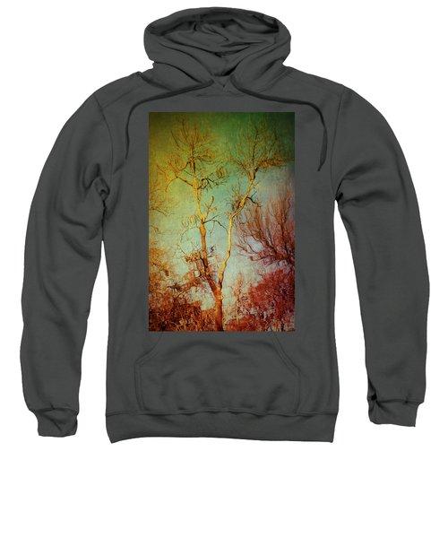 Souls Of Trees Sweatshirt