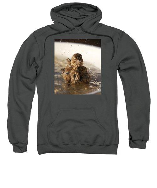 Sparrow Bathing Sweatshirt