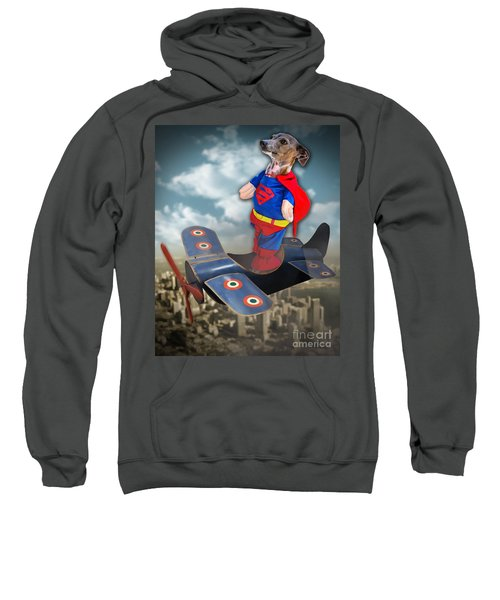 Speedolini Flying High Sweatshirt