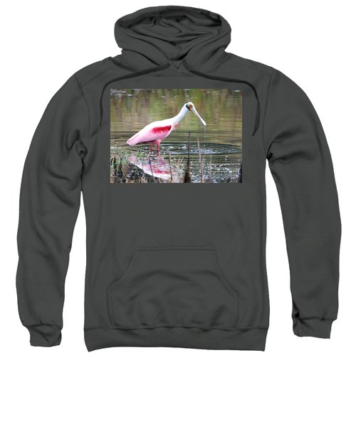 Spoonbill In The Pond Sweatshirt by Carol Groenen