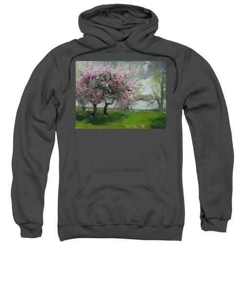 Spring By The River Sweatshirt