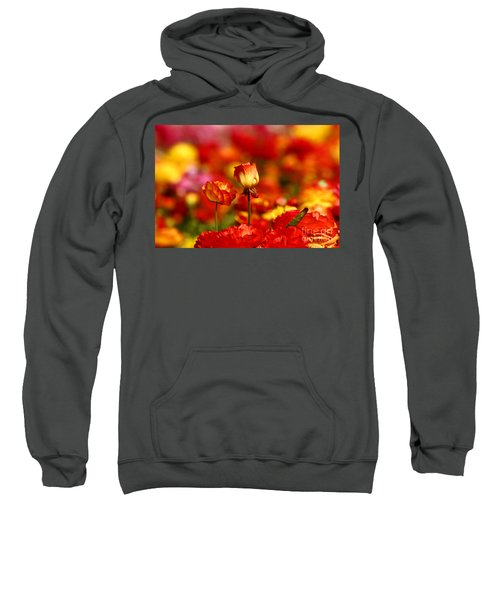 Carlsbad Spring Sweatshirt
