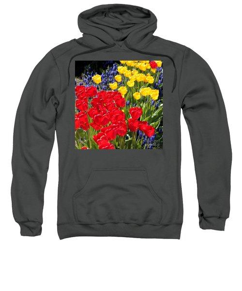 Spring Sunshine Sweatshirt
