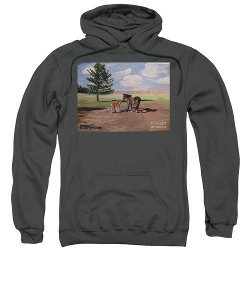 Springtime Foal Sweatshirt