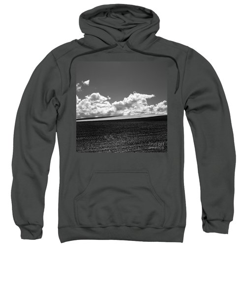 Sprouting Field Of Sunflowers And Field Of Rape At Back. Auvergne. France Sweatshirt