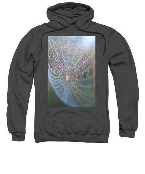 Spyder's Web Sweatshirt