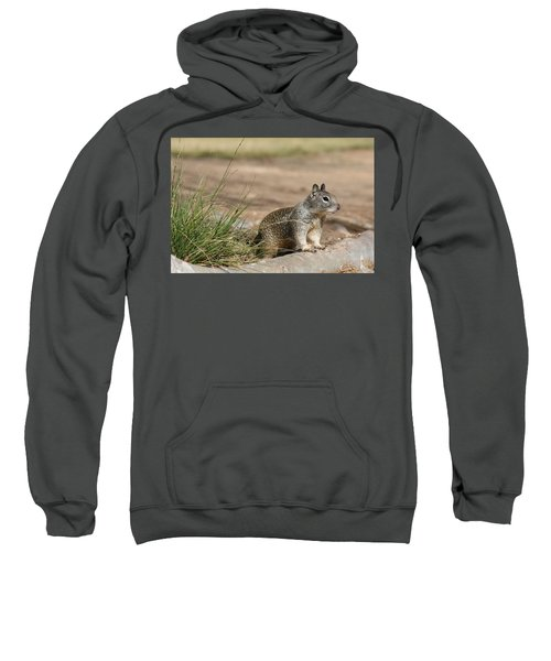 The Beggar  Sweatshirt