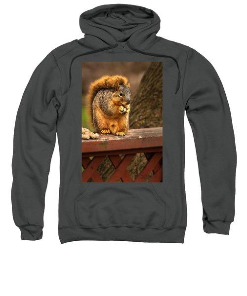 Squirrel Eating A Peanut Sweatshirt