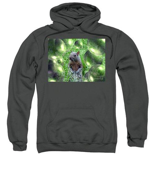 Squirrel In Bubbles Sweatshirt