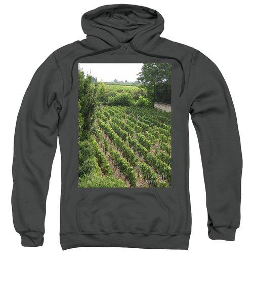 St. Emilion Vineyard Sweatshirt