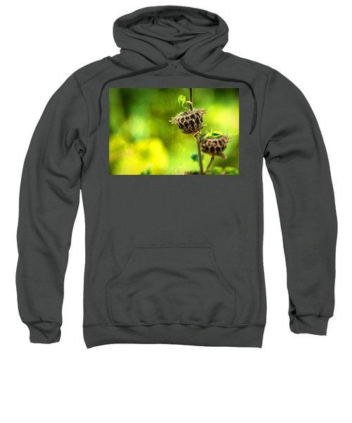 Stark Beauty Sweatshirt
