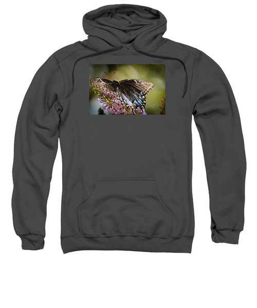Step Lightly Sweatshirt