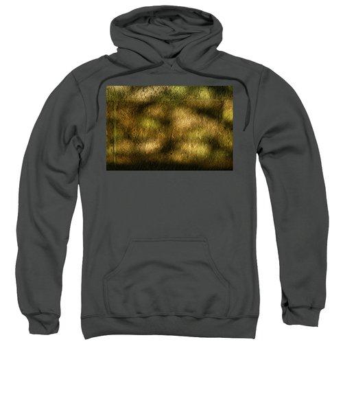 Stone And Light 02 Sweatshirt