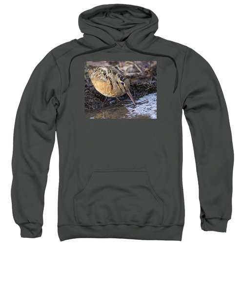 Streamside Woodcock Sweatshirt by Timothy Flanigan
