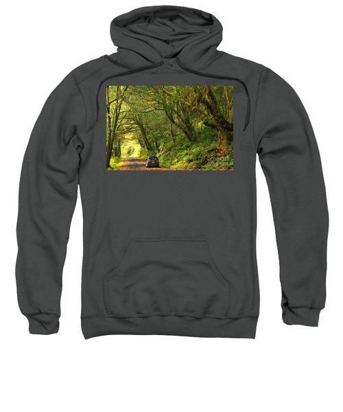 Subaru In The Rainforest Sweatshirt