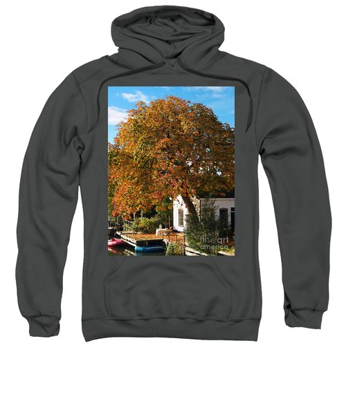 Sun Leaves Sweatshirt