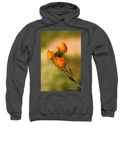Sun Star Flower Sweatshirt