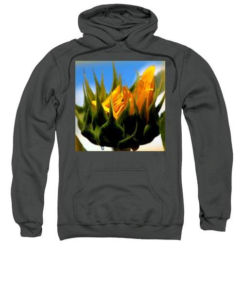 Sunflower Teardrop Sweatshirt