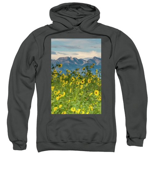 Sunflowers In The San Luis Valley Sweatshirt