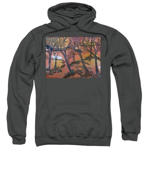 Sunlit Forest Sweatshirt