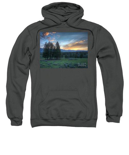 Sunrise Behind Pine Trees In Yellowstone Sweatshirt