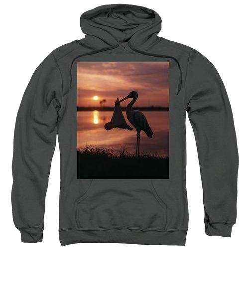Sunrise Silhouette Of Stork Carrying Sweatshirt