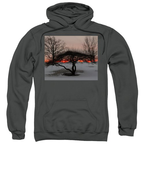 Sunroof Sweatshirt