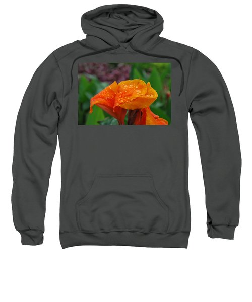 Sunshine From Within Sweatshirt