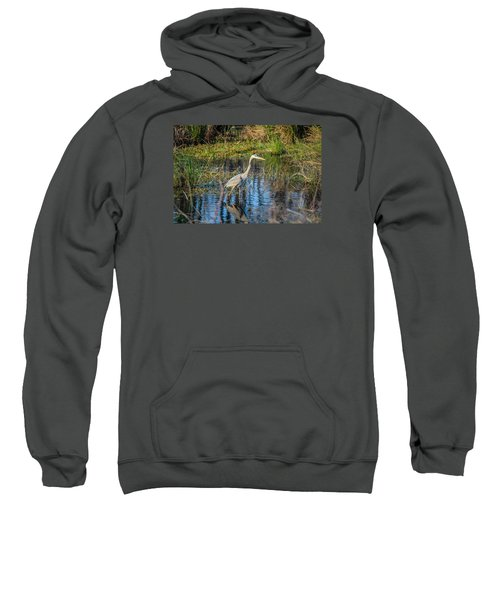 Surprise On The Trail Sweatshirt