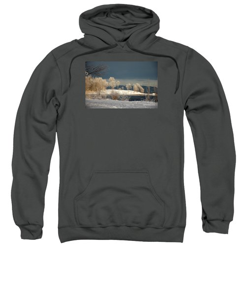 Swans On A Frosty Day Sweatshirt