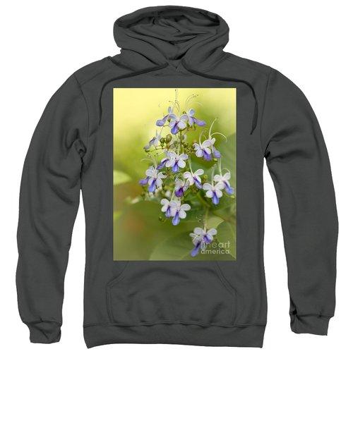 Sweet Butterfly Flowers Sweatshirt