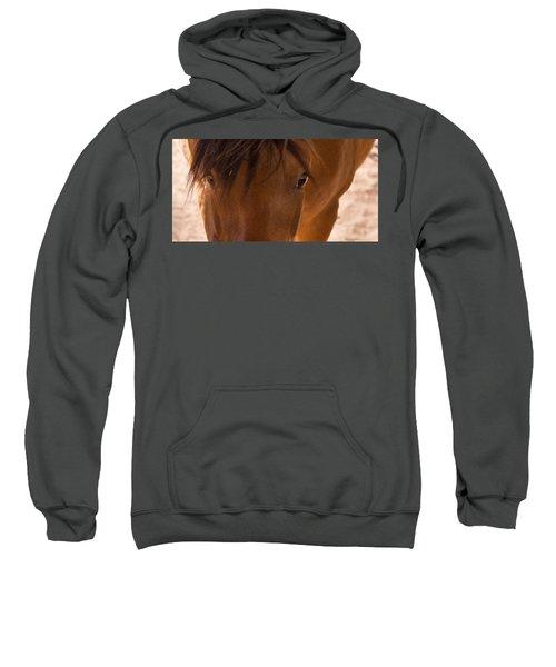 Sweet Horse Face Sweatshirt