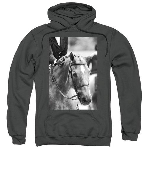 Sweet Pony Sweatshirt