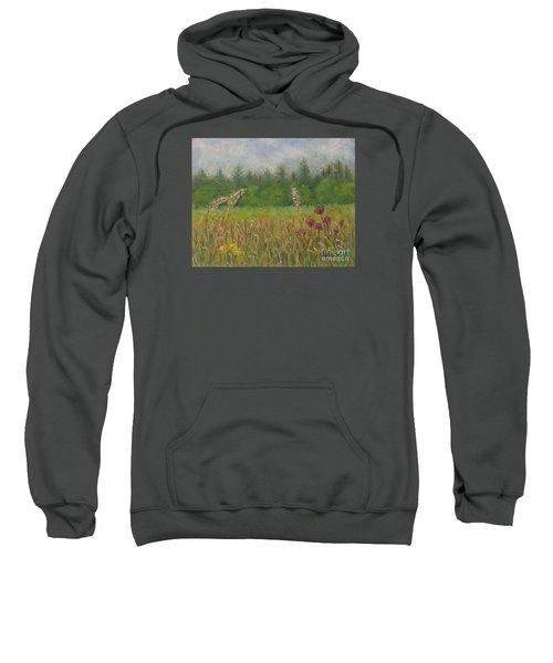 Calm Culloden Sweatshirt