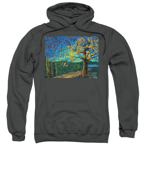 Swing By The Road Sweatshirt