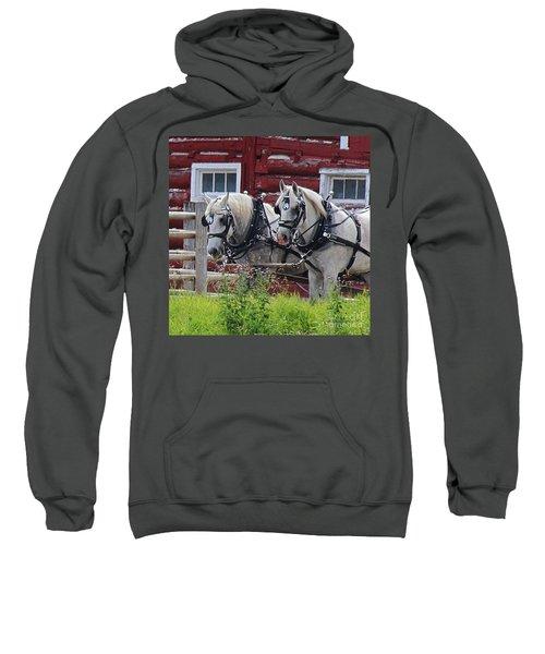 Team Of Greys Sweatshirt