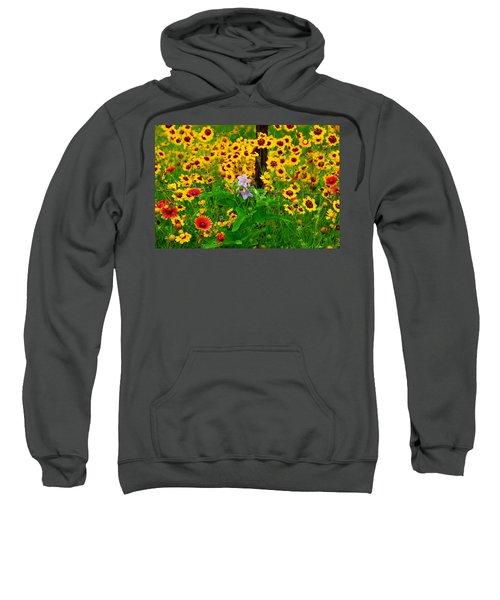 Texas Spring Delight Sweatshirt