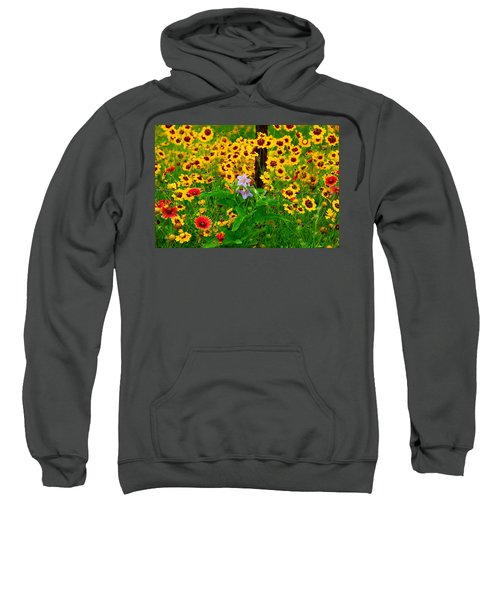 Texas Spring Delight Sweatshirt