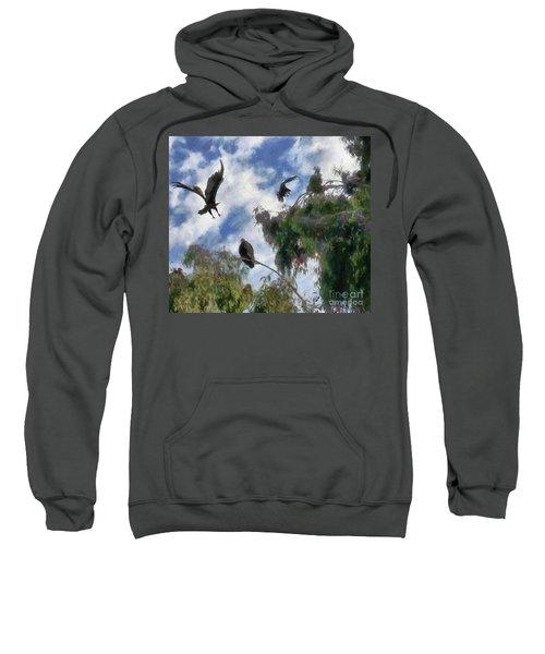 The Buzzard Tree Sweatshirt