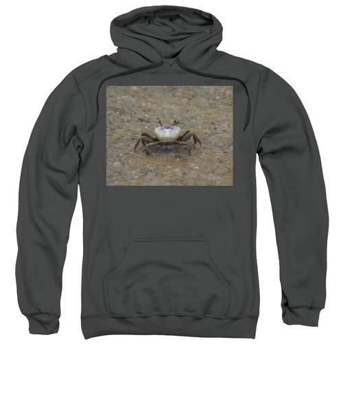 The Fiddler Crab On Hilton Head Island Sweatshirt