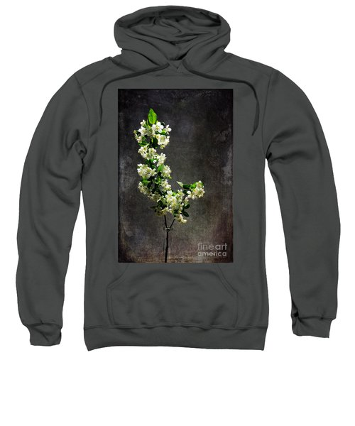 The Light Season Sweatshirt