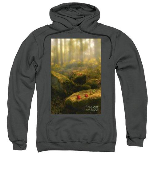 The Magic Forest Sweatshirt