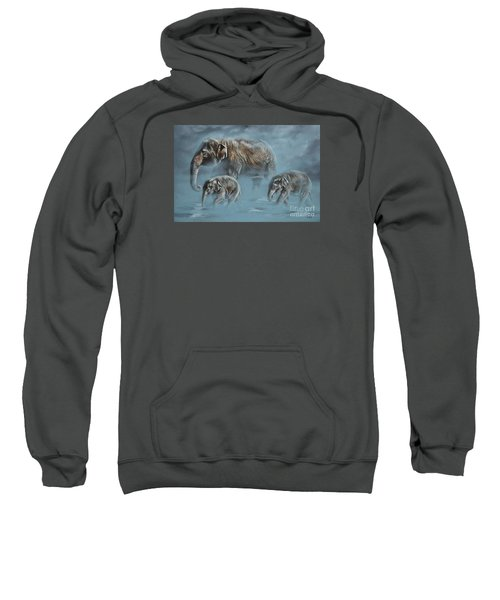 The Mist Sweatshirt