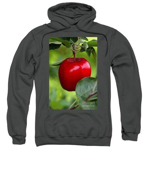 The Red Apple Sweatshirt