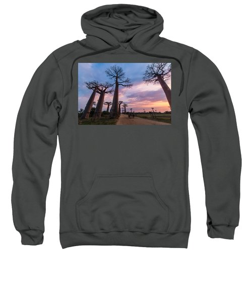 The Road To Morondava Sweatshirt