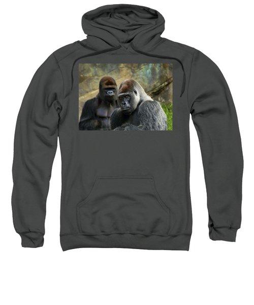 The Stare Sweatshirt