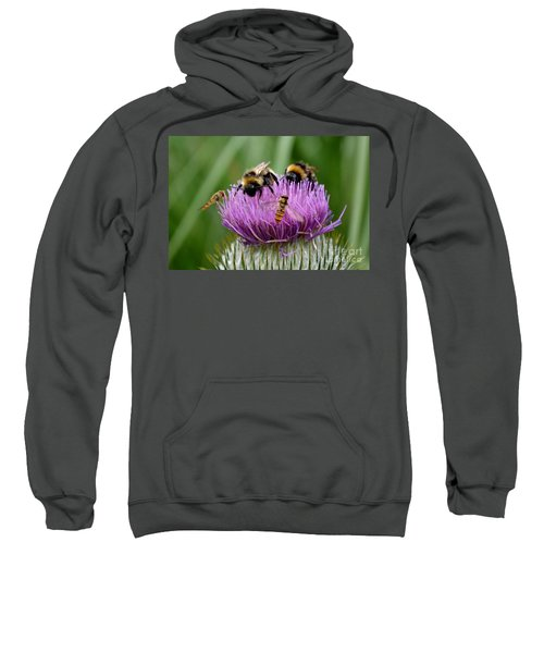 Thistle Wars Sweatshirt