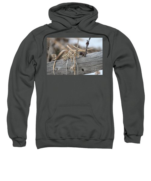 Thistles And Barbed Wire Sweatshirt